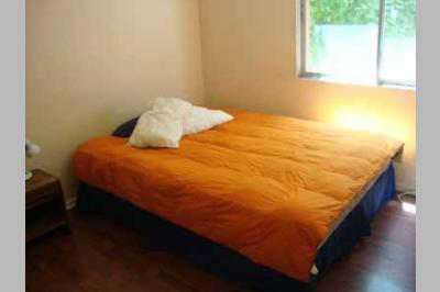 Furnished accommodation Marcelo - Metro Manuel Montt 2 (2259)