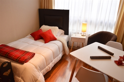 Furnished accommodation Catedral - Metro Plaza De Armas 1 (422)